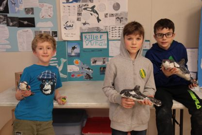 From left, Salt Spring Elementary School students Luke Bevan, Atticus Crawford and Jack Nuyens with their killer whale project at a March 13 Species at Risk Fair held in cooperation with the Salt Spring Island Conservancy.