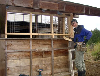 Reid Richard installs wire panels at Redwing Farm's sheep barn to prevent nighttime cougar raids.