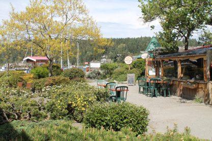 Tree House Cafe and Manson Road area leading to Kanaka Wharf.